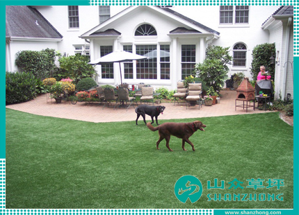 Artificial Grass for Leisure (1)